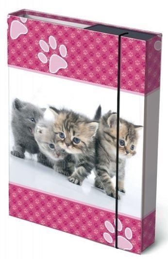Box na sešity Koťátka A4