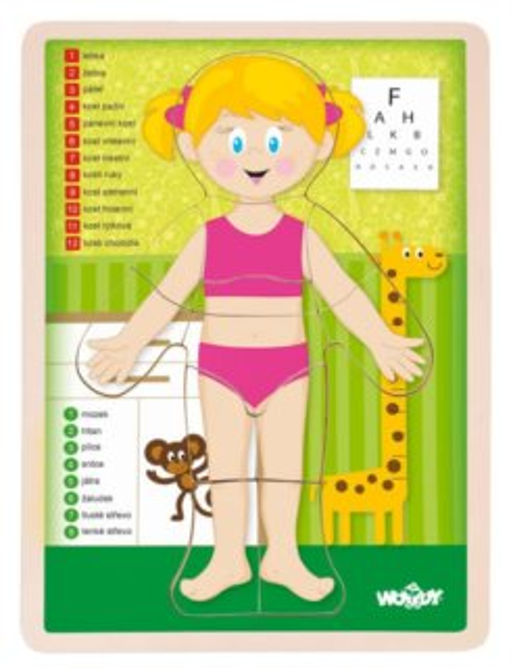 WOODY Oboustranné puzzle Lidské tělo - Dívka