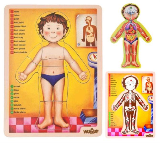 WOODY Oboustranné puzzle Lidské tělo
