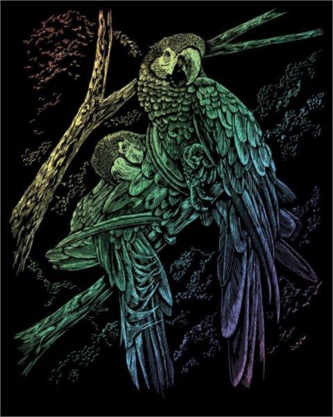 poškozený obal: Duhový škrabací obrázek Papoušci
