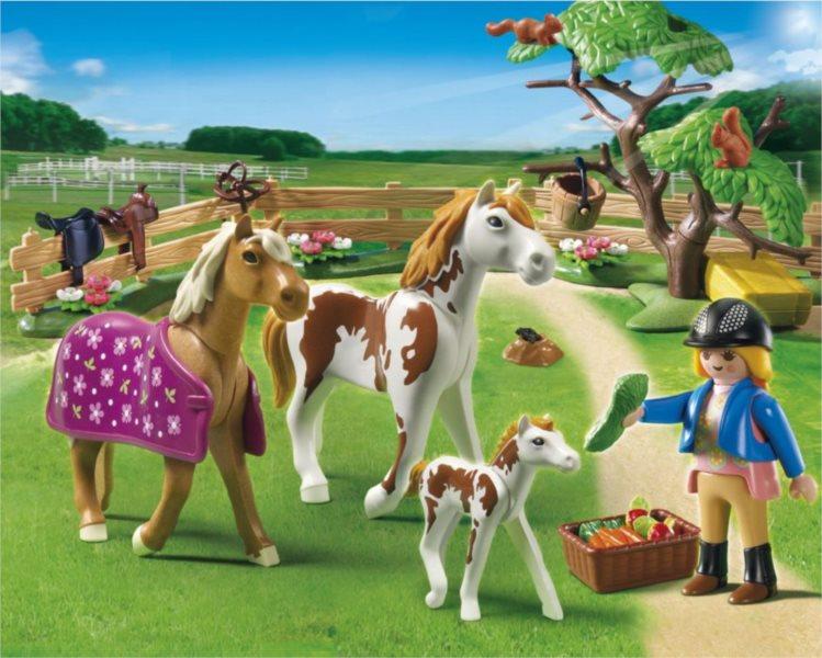 Koňský trénink 5227
