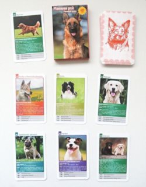 Dětské karty Kvarteto - Plemena psů