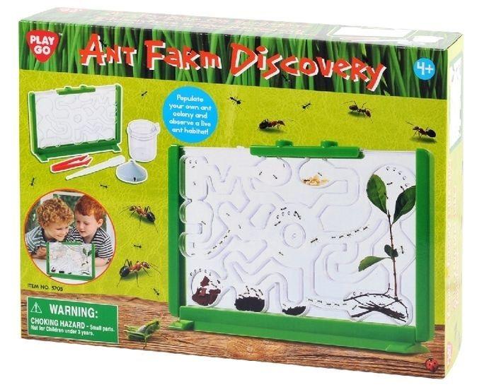 Mravenčí bludiště