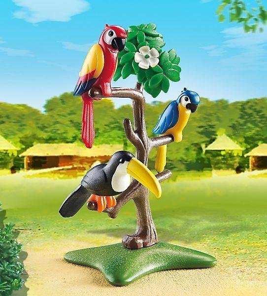 Papoušci a tukan na stromě 6653