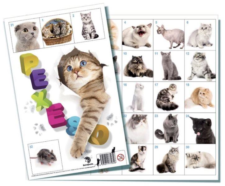 Pexeso - Kočky