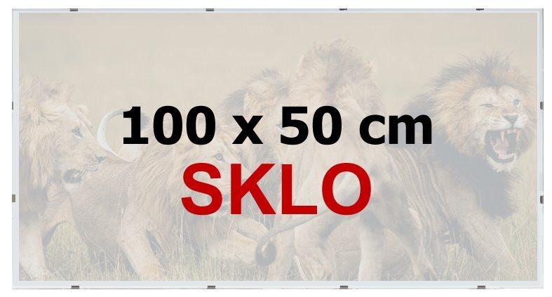 BFHM Rám na puzzle Euroclip 100x50cm (sklo)