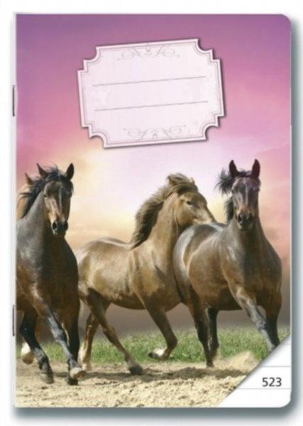 BONAPARTE Školní sešit 523 Koně