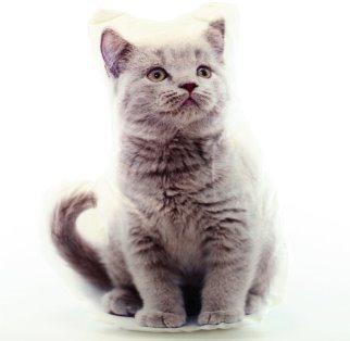 Tvarovaný polštářek Britská kočka